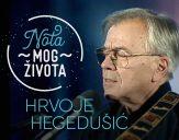 hds-nota-heg-logo-509px