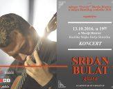 srdan-bulat_plakat-509px-za-web