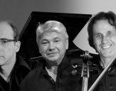 Trio Amael